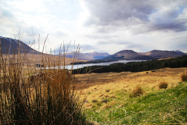 Landschaft der Highlands mit Wiesen und Bergen