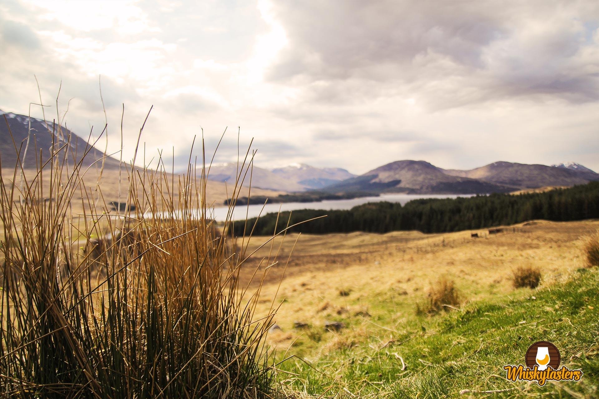 Ein Ausblick über die schottischen Highlands