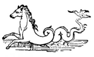 Kelpie - Wassergeist - Pferd mit Fischschwanz